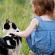 Kedi ve Köpekleriniz İçin Kaliteli Mama Seçin